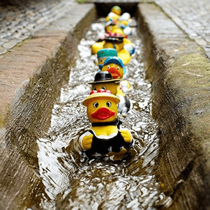 Fundraising for Carer Support South Lakes idea - rubber duck race